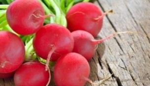 bunch of fresh radish on rustic wooden background